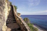 1,000 Steps Limestone Stairway in Cliff, Bonaire, Caribbean Art Print