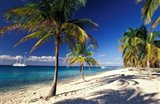 Tropical Beach on Isla de la Juventud, Cuba Art Print