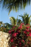 Viva Wyndham Dominicus Beach, Bayahibe, Dominican Republic Art Print