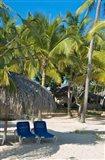 Beach Chairs, Viva Wyndham Dominicus Beach, Bayahibe, Dominican Republic Art Print