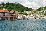 Grenada, St George, Carenage, Residential area Art Print