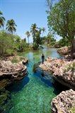 Alligator Hole, Black River Town, Jamaica, Caribbean Art Print