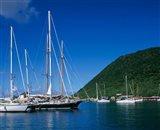 Frenchmans Cay, Tortola, British Virgin Islands, Caribbean Art Print