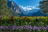 Wildflowers In Banff National Park Art Print