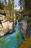 Athabasca Falls, Jasper National Park, Alberta, Canada Art Print