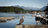 British Columbia, Vancouver Island, Strathcona Park, Harbor Art Print