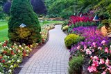 Path and Flower Beds in Butchart Gardens, Victoria, British Columbia, Canada Art Print
