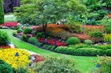 Butchart Gardens in Full Bloom, Victoria, British Columbia, Canada Art Print