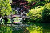 British Columbia, Vancouver, Hately Gardens bridge Art Print