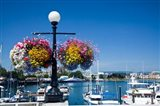 British Columbia, Victoria, Boat Harbor Art Print