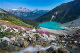 British Columbia, Meltwater Stream Flows Past Wildflowers Into Upper Joffre Lake Art Print
