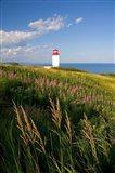 Lighthouse at St Martins Art Print