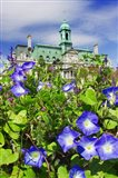 USA, Montreal View Of City Hall Building Behind Flowers Art Print
