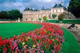 Luxembourg Palace in Paris, France Art Print