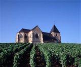 Chavot Church and Vineyards, France Art Print