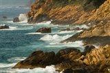 Coastline of Golfe de Porto, Porto, Corsica, France Art Print