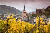 Germany, Rhineland-Pfalz, Bacharach, Elevated Town View In Autumn Art Print