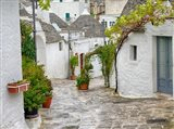 Typical Trulli Houses In Alberobello Art Print