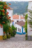 Portugal, Obidos Leira District Cobblestone Walkway Art Print