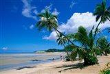 Beach at Musket Cove, Malololailai Island, Fiji Art Print