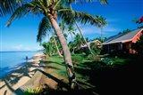 Hideaway Resort, Coral Coast, Viti Levu, Fiji Art Print