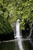 Tobu Vei Tui Waterfall, Tavoro NP, Taveuni, Fiji Art Print
