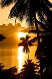 Sunset, Taveuni Estates, Taveuni, Fiji Art Print
