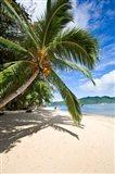Privite Island Resort, Taveuni, Fiji Art Print