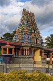 Sri Siva Subramaniya Hindu temple in Fiji Art Print