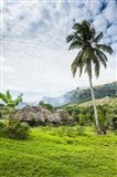 Traditional thatched roofed huts in Navala in the Ba Highlands of Viti Levu, Fiji, South Pacific Art Print