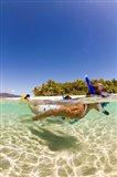 Snorkeling, Beqa Island, Fiji Art Print