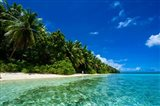 White Sand Beach In Turquoise Water In The Ant Atoll, Micronesia Art Print
