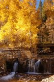Autumn Waterfalls In The Sierra Art Print