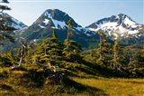 Mount Eccles Near Cordova, Alaska Art Print