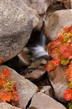 Small Waterfall In The Sierra Nevada Mountains Art Print