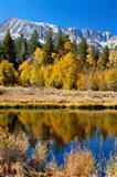 Yosemite's Mount Dana Art Print