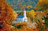St Sava Serbian Church In Autumn Art Print