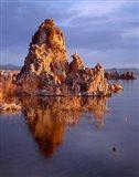 Mono Lake, California Art Print