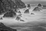 California, Mendocino Coast, Bodega Bay (BW) Art Print