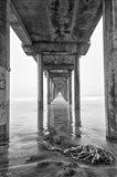 Scripps Pier, California (BW) Art Print