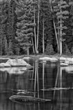 California, Sierra Lake (BW) Art Print