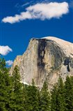 Half Dome, California Art Print