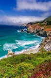 The Big Sur Coast At Rocky Point Art Print