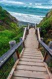 Boardwalk Trail To Sand Dollar Beach Art Print