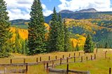 Autumn Colors In The San Juan Mountains, Colorado Art Print