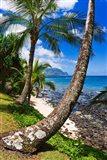Hideaways Beach, Island Of Kauai, Hawaii Art Print