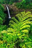 Rainbow Falls, Wailuku River State Park, Hawaii Art Print