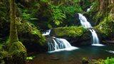 Onomea Waterfalls At The Hawaii Tropical Botanical Garden Art Print