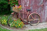 Old Bicycle With Flower Basket, Marion County, Illinois Art Print