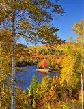 Wyman Lake In Autumn, Maine Art Print
